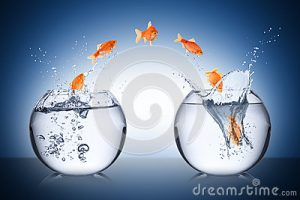 fish-change-concept-bowl-jump-38148894