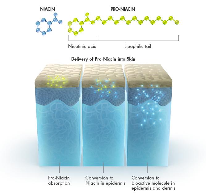 molecule.pic.